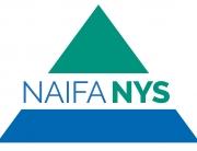 Naifa-NYS-LARGE-03-03